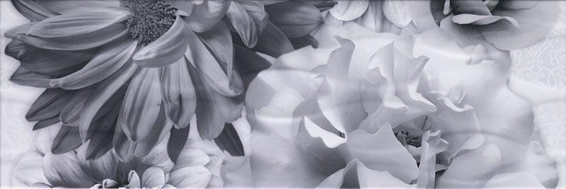fiore_negro-dec2