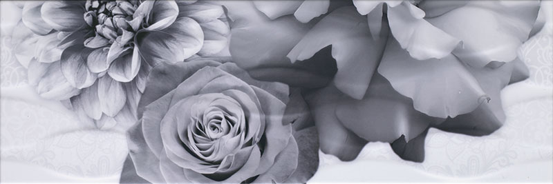 fiore_negro-dec3