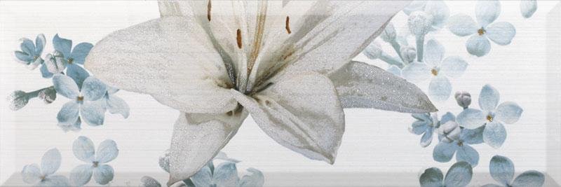 iris-dec1